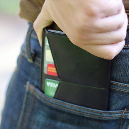 Dash Travel Passport Wallet